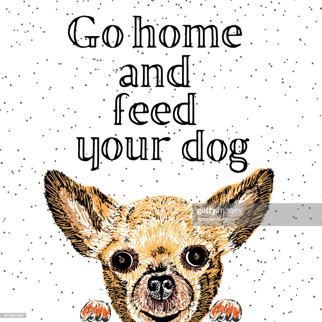 Go home and feed your dog. Sign with cute smiling but hungry dog. Motivational lettering on texture background. Inscriptions for dog lovers. Inspirational typographic calligraphy. Demanding phrase.