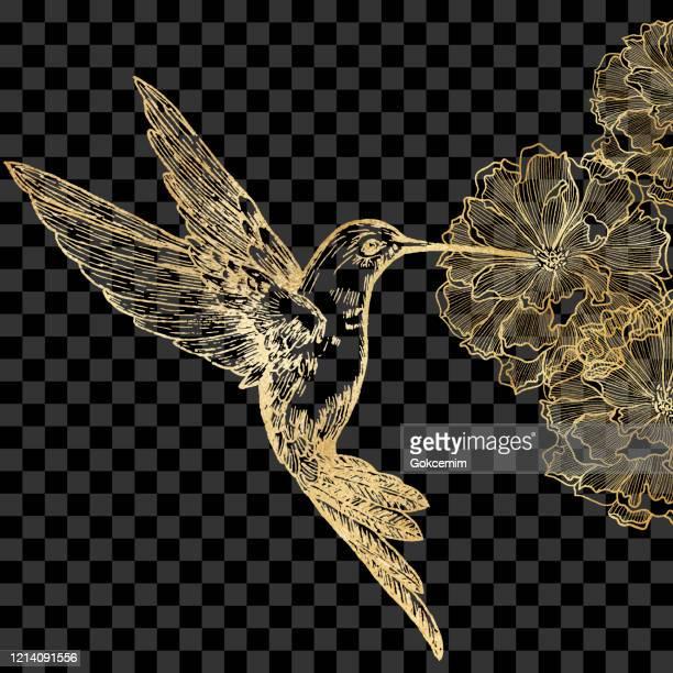 ゴールドビーハミングバードと牡丹孤立。手描きクリップ アート デザイン要素。 - 代替医療点のイラスト素材/クリップアート素材/マンガ素材/アイコン素材