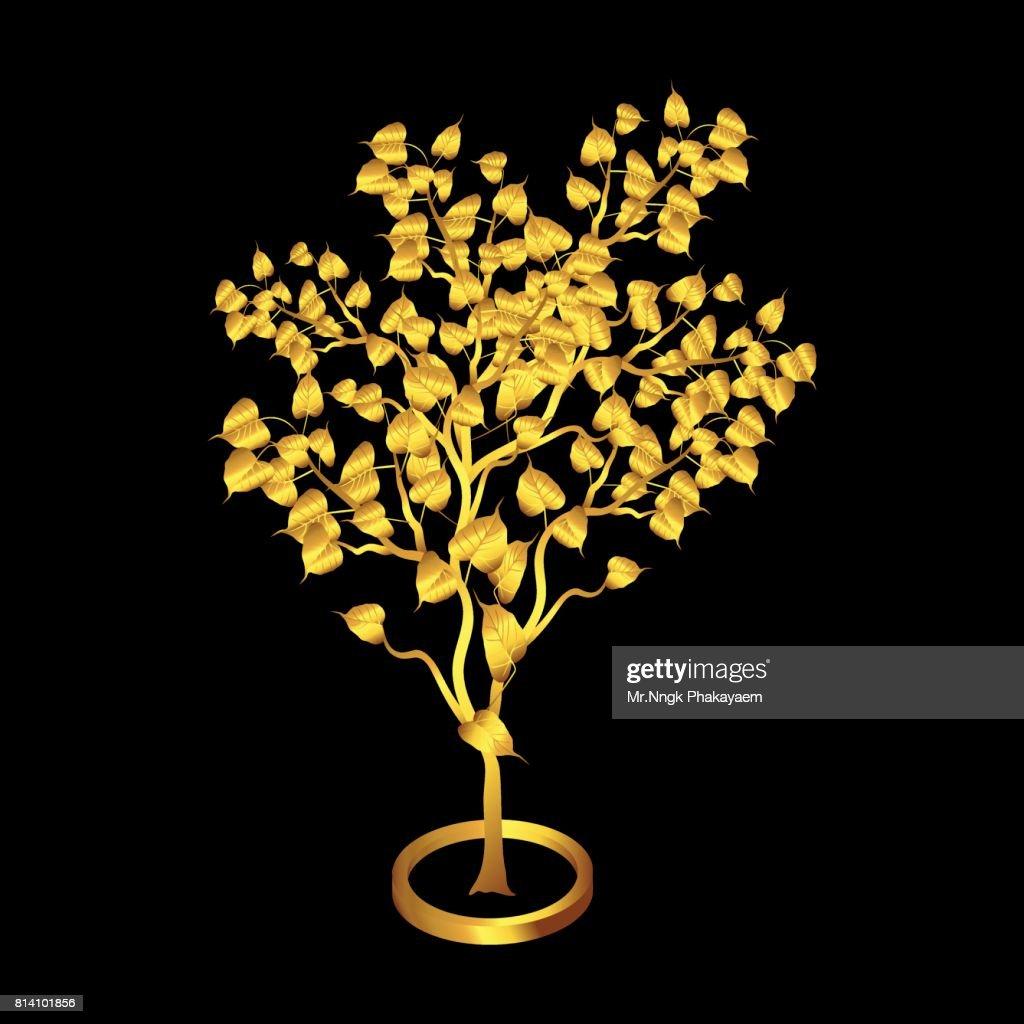 Gold Bodhi tree Isolated on black background.