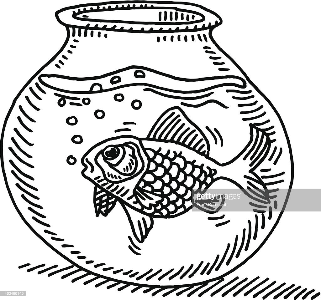 gold fish bowl water drawing vector art