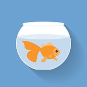 Gold fish in bowl