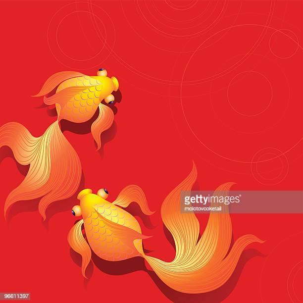 illustrations, cliparts, dessins animés et icônes de poisson d'or - poisson rouge