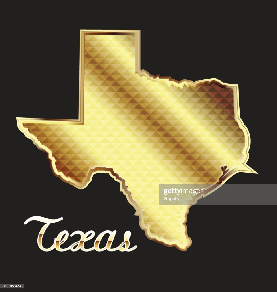 Gold Texas state map icon vector image