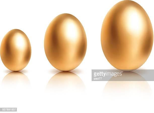 ilustraciones, imágenes clip art, dibujos animados e iconos de stock de huevos de oro creciente sobre fondo blanco - huevo etapa de animal
