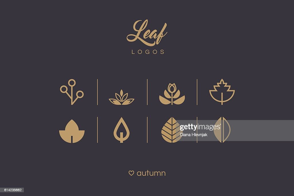 Golden minimal leaf and foliage logo icons collection