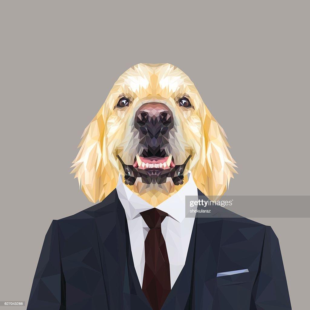 Golden retriever dog animal dressed up in navy blue suit.