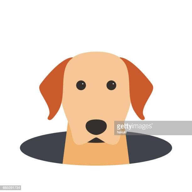 Golden Retriever dog on the hole,watching, vector illustration