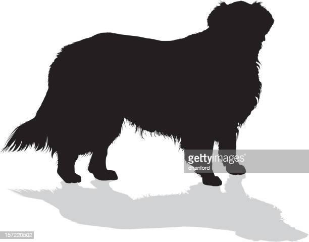 golden retriever dog, silhouette - golden retriever stock illustrations, clip art, cartoons, & icons