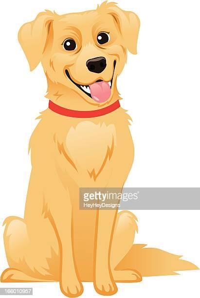 golden retriever dog - golden retriever stock illustrations, clip art, cartoons, & icons