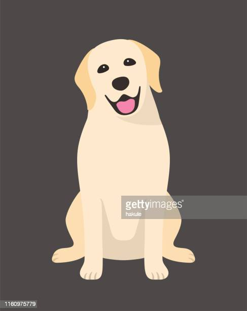 golden retriever is sitting in the front, looking at you with its head tilted. - dog stock illustrations