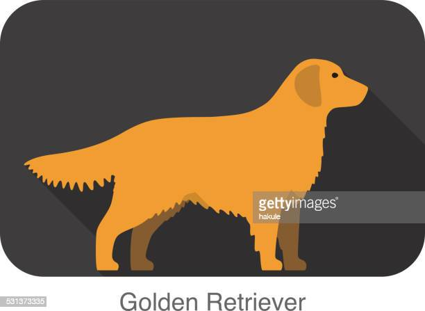 Golden retriever  walking  flat 3D icon design