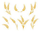 golden wheat ears icons logo set