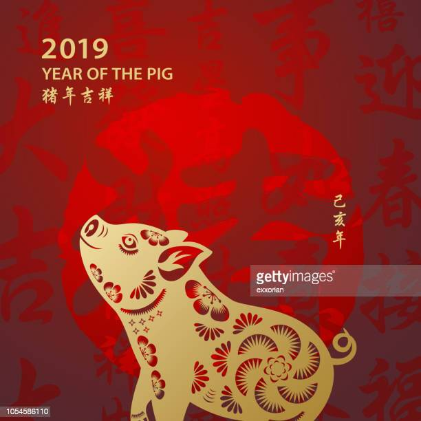 golden year of the pig - non western script stock illustrations