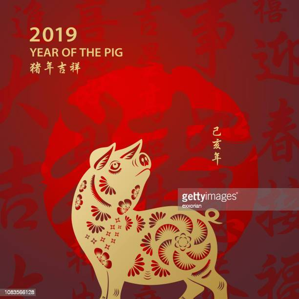 Golden Year of the Pig