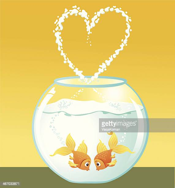 goldfish couple in love - fishbowl stock illustrations, clip art, cartoons, & icons
