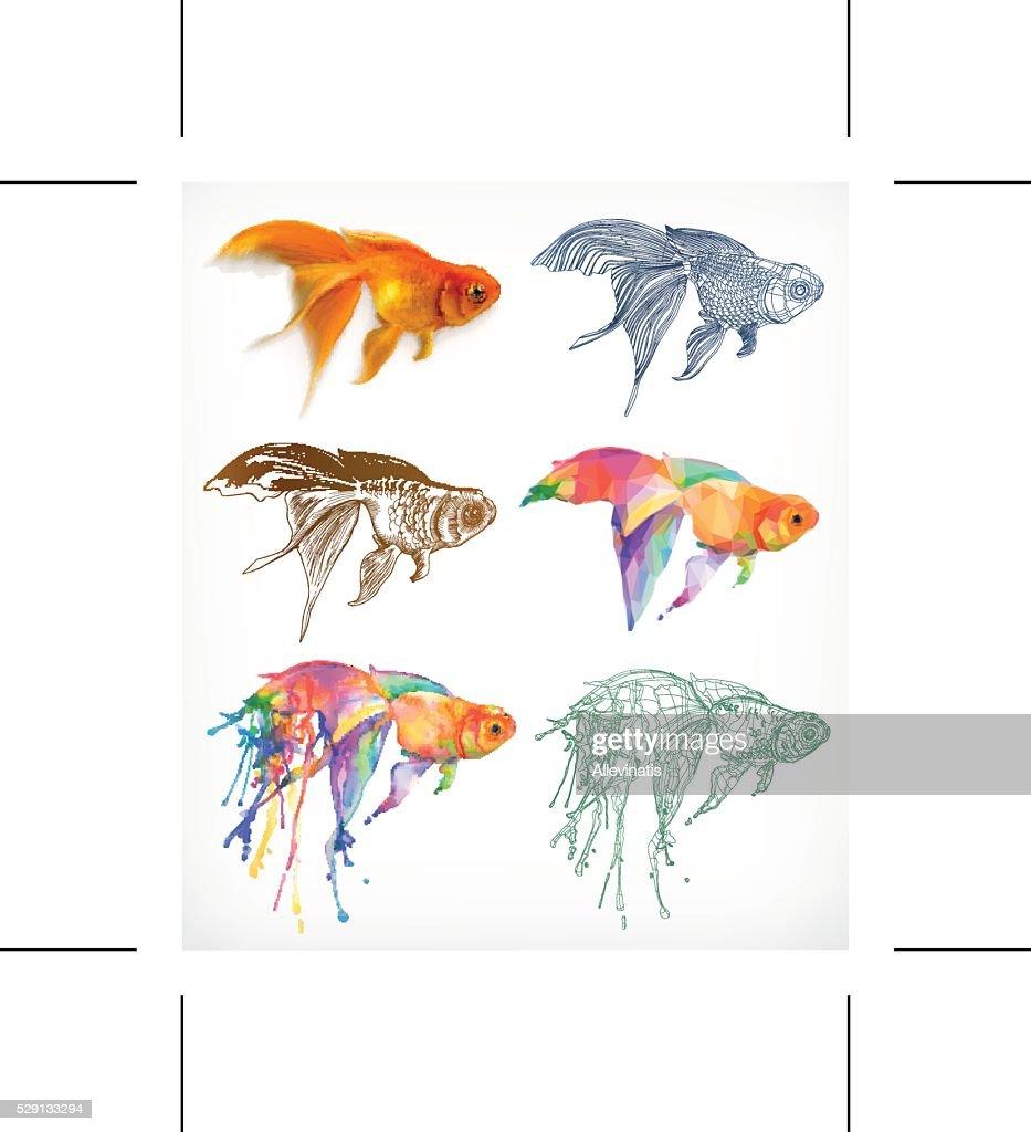 Goldfish, different styles