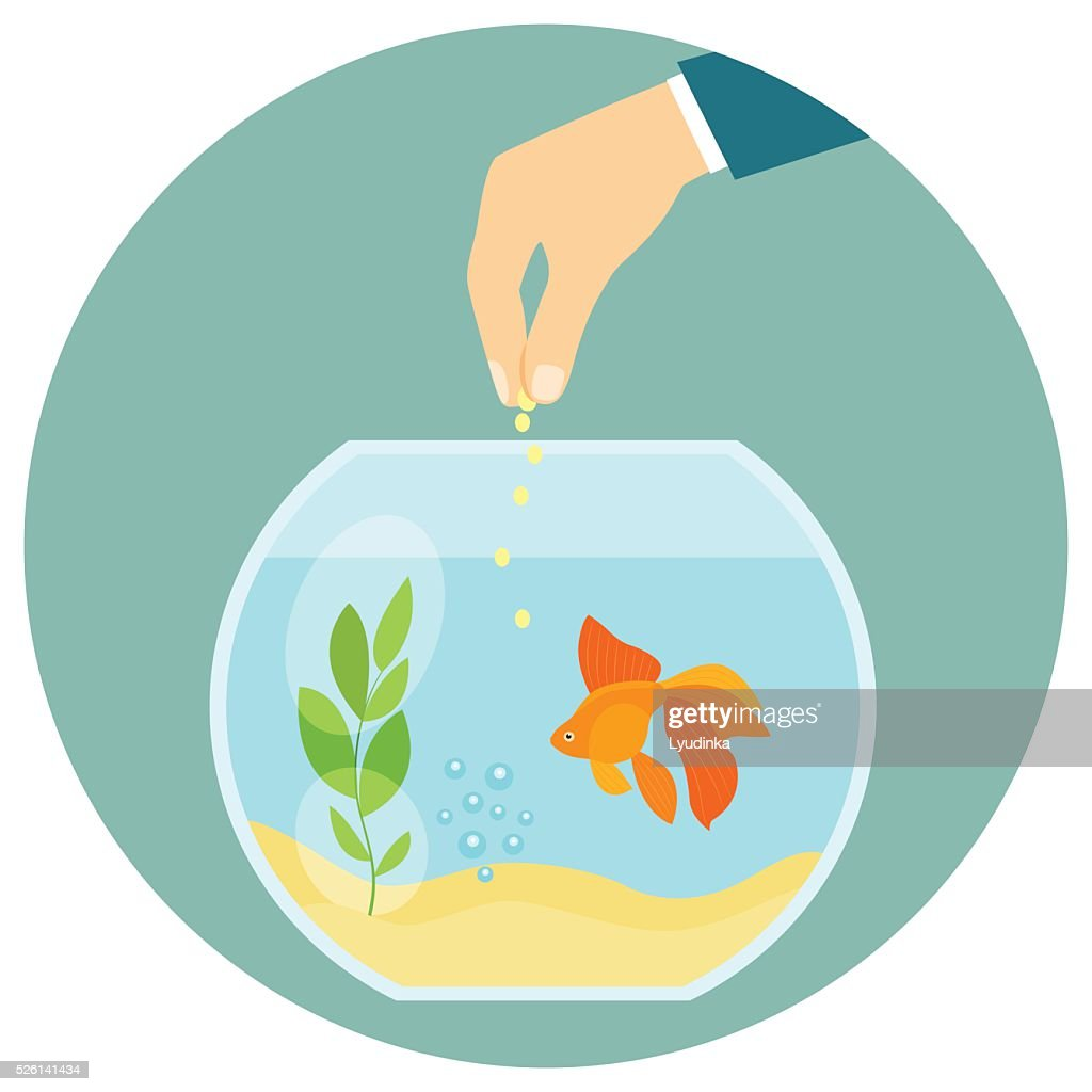 Goldfish in aquarium isolated. Feeding goldfish. Flat vector illustration