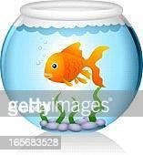 goldfish in fishbowl - fishbowl stock illustrations, clip art, cartoons, & icons