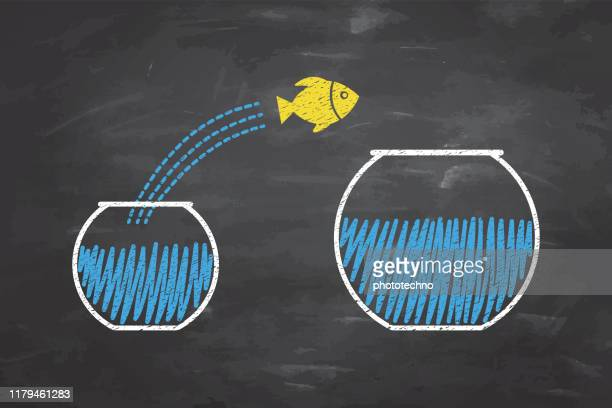 goldfish jumping out of the water on blackboard background - goldfish leap stock illustrations