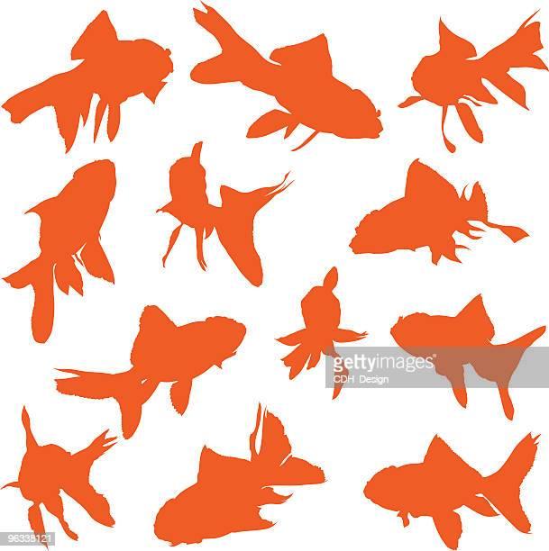 60点の金魚のイラスト素材クリップアート素材マンガ素材アイコン