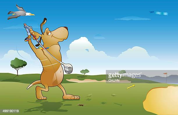 golf relax - sand trap stock illustrations, clip art, cartoons, & icons