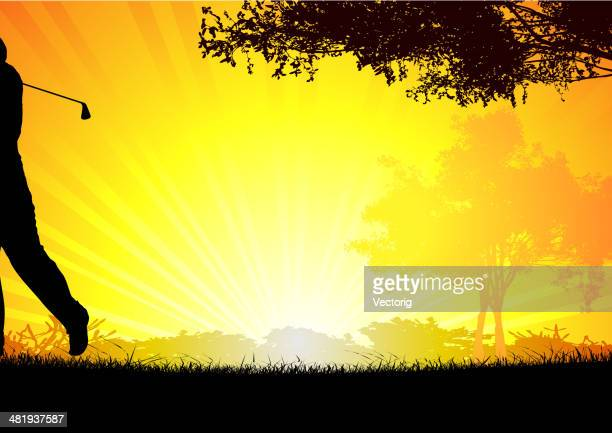 golfer on sunset - landscaper professional stock illustrations, clip art, cartoons, & icons