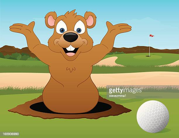 Golfing with a Gopher