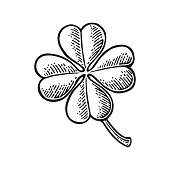 Good luck four leaf clover. Vintage vector engraving illustration