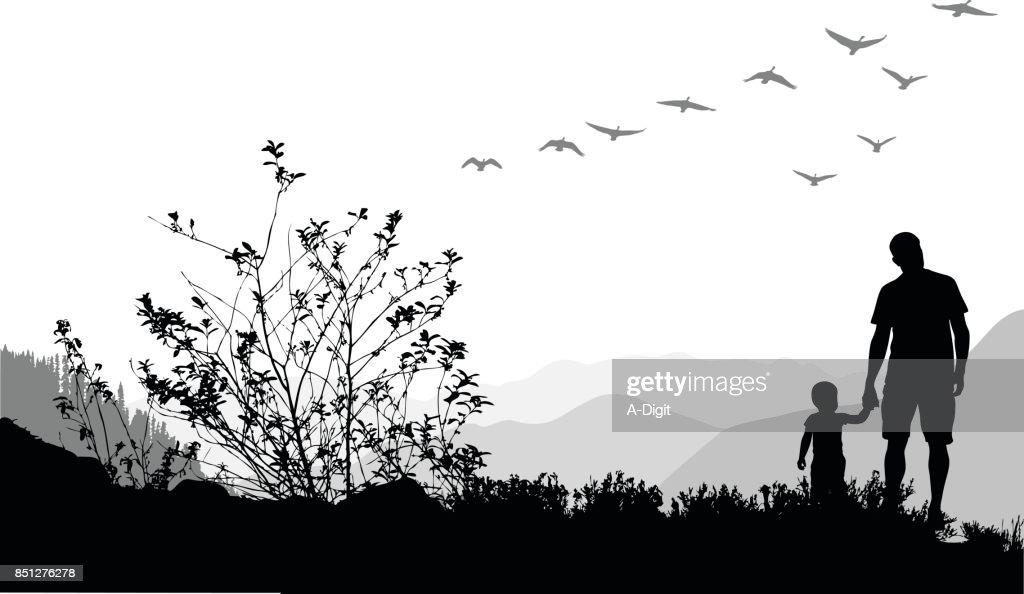 Goose Flight Migration