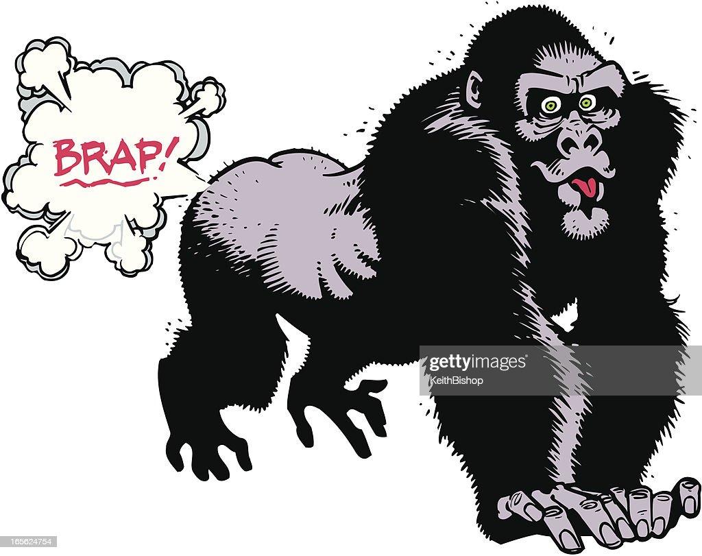 Gorillla Farting : stock illustration