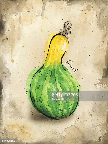 Gourd Painted in Watercolor - Vector Illustration