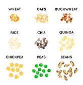 Grain and beans of different agricultural species. Graphic Cereals for label and packaging