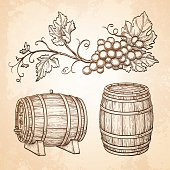 Grape branches and barrels
