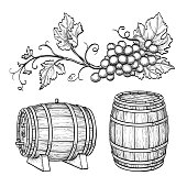 Grape branches and wine barrels.