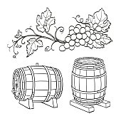 Grape branches and wine barrels