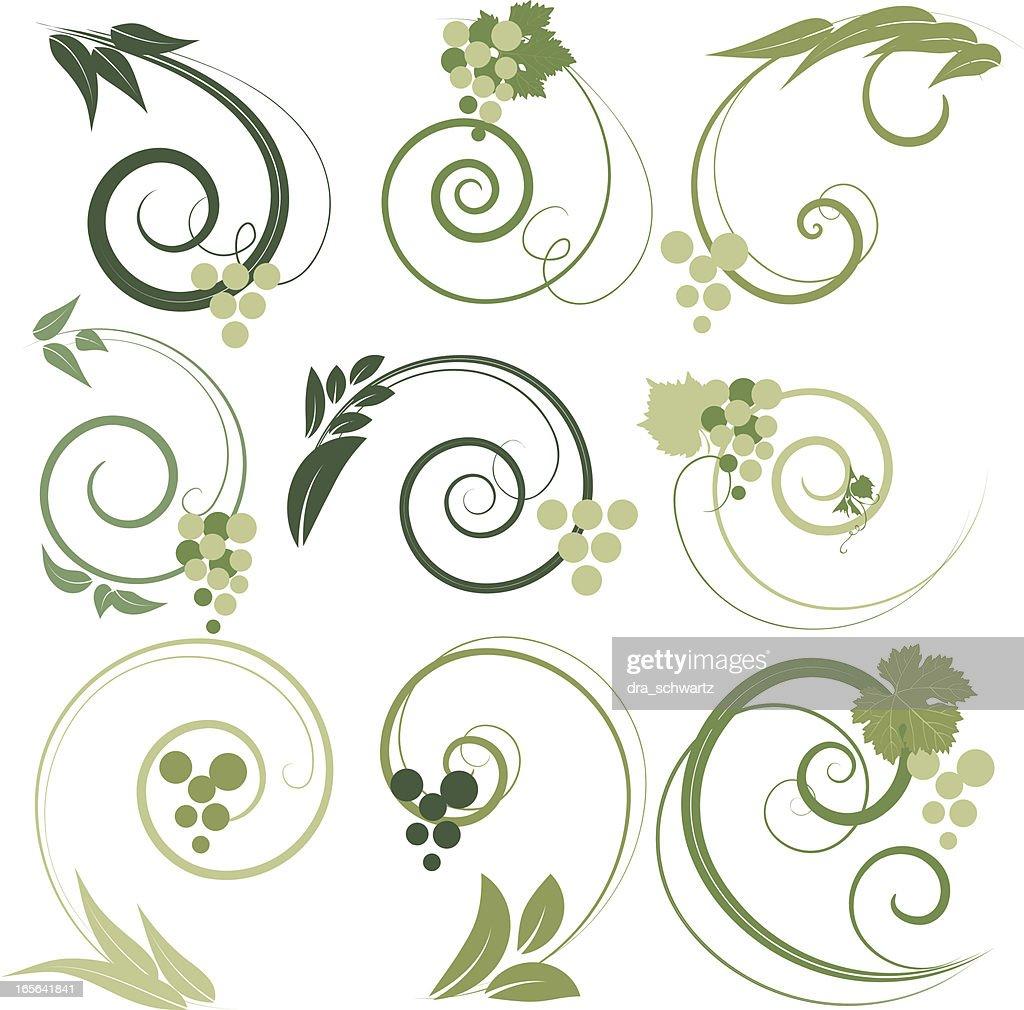Grape decorative ornaments : Stock Illustration