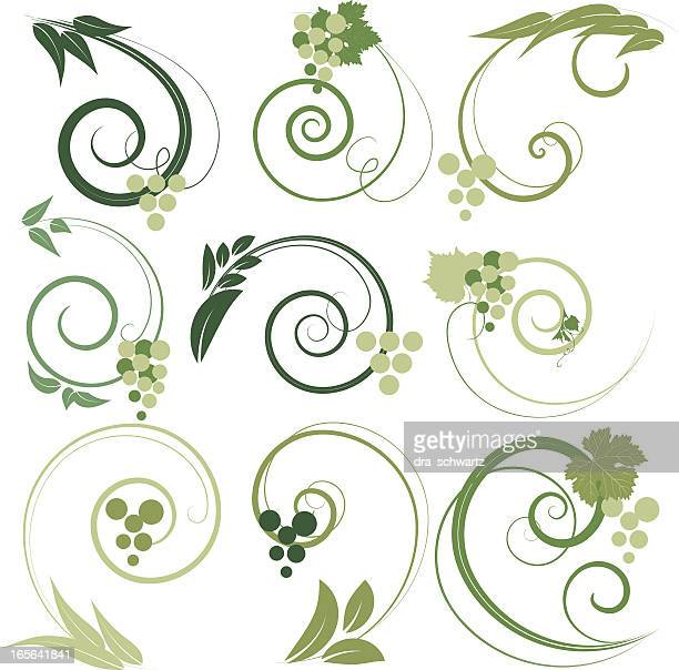 grape decorative ornaments - vine stock illustrations