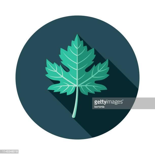 ilustrações de stock, clip art, desenhos animados e ícones de grape leaf wine icon - folha de parreira