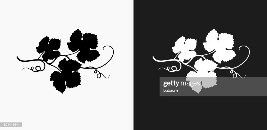 Grape Leafs Icon on Black and White Vector Backgrounds : Stock Illustration