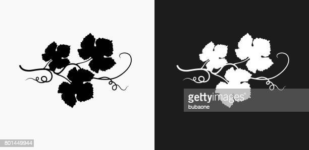 grape leafs icon on black and white vector backgrounds - vine plant stock illustrations