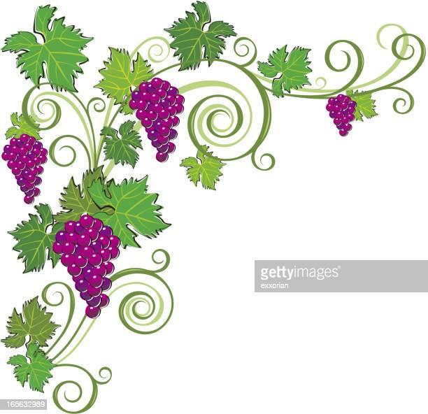 Adorno de uva