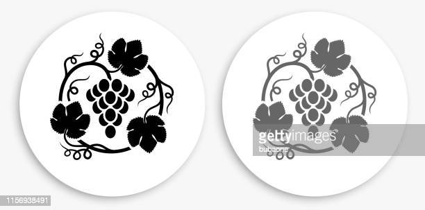 grapes in vines black and white round icon - vine stock illustrations