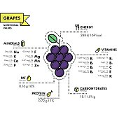 Grapes - nutritional information. Healthy diet.