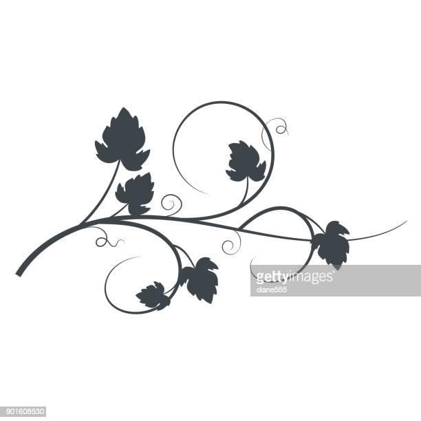 grapevine silhouette - vine plant stock illustrations