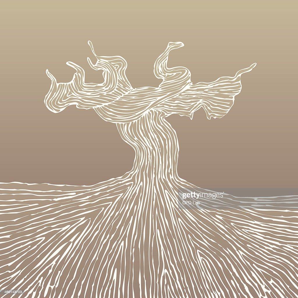 Grapevine trunk vector illustration