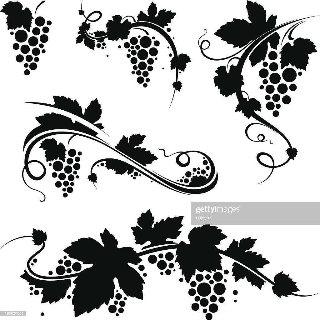 グレープバイン(ワイン銘柄 : ストックイラストレーション