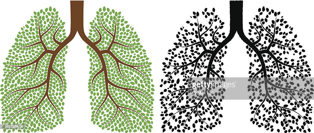 Graphic art of lungs composed plants, leaves and branches