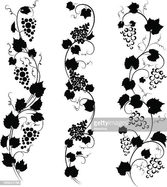 graphic black and white image of three grape vines - vine stock illustrations