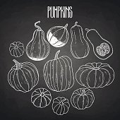 Graphic collection of pumpkins