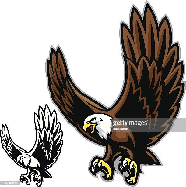 graphic image in color and black-and-white of an eagle - talon stock illustrations